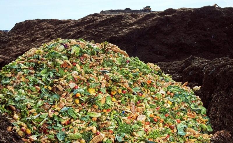 A quoi sert l'argent, quand on voie le gaspillage alimentaire qui est produit par la société de consommation?